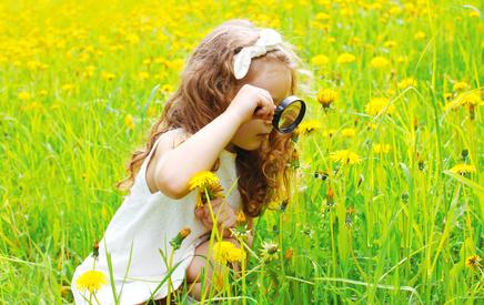 Kind schaut mit Lupe auf Blüten in Wiese