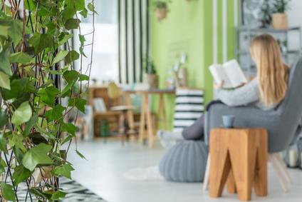 Frau sitzt zu Hause entspannt mir Pflanze im Vordergrund